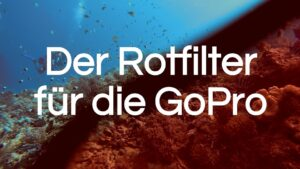 Read more about the article Rotfilter GoPro | Was macht ein Rotfilter Unterwasser?